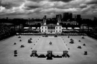Dressage at Greenwich
