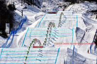 Ski Cross, the Gold (L) and Silver Medalists (R) race to the finish